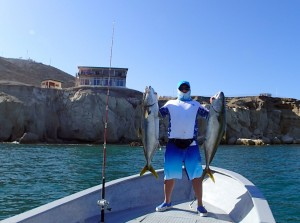 angler with yellowtail and Baja Magic Lodge, Cedros Outdoor Adventures 2013