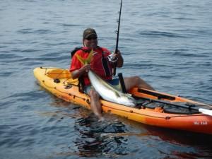 Cedros Island Kayak fishing1