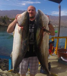 CEDROS-Angler-iimage-John-Burras-Brace-of-big-yellowtail-263x300.jpg