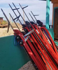 CEDROS-Angler-iimage-John-Burras-spearguns-250x300.jpg