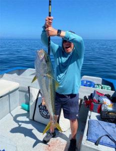 CEDROS-Angler-iimage-Roberto-Chavez-yellowtail-at-gaff-231x300.jpg